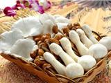 六种最有益的菌类香菇提高免疫力